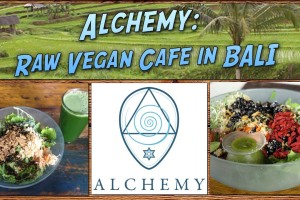 Alchemy: Raw Food Cafe in Ubud Bali